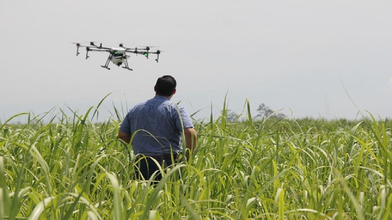 Drones fumigadores